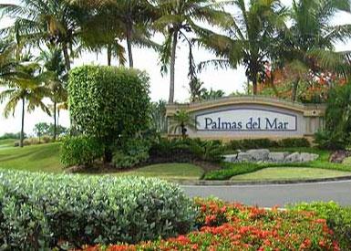 Palmas Del Mar Una Comunidad Vibrante Y Nica
